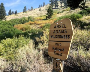 Ansel Adams Wilderness Sign