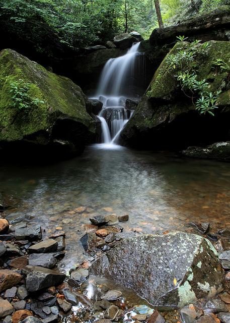 Lower Grotto Falls Portrait