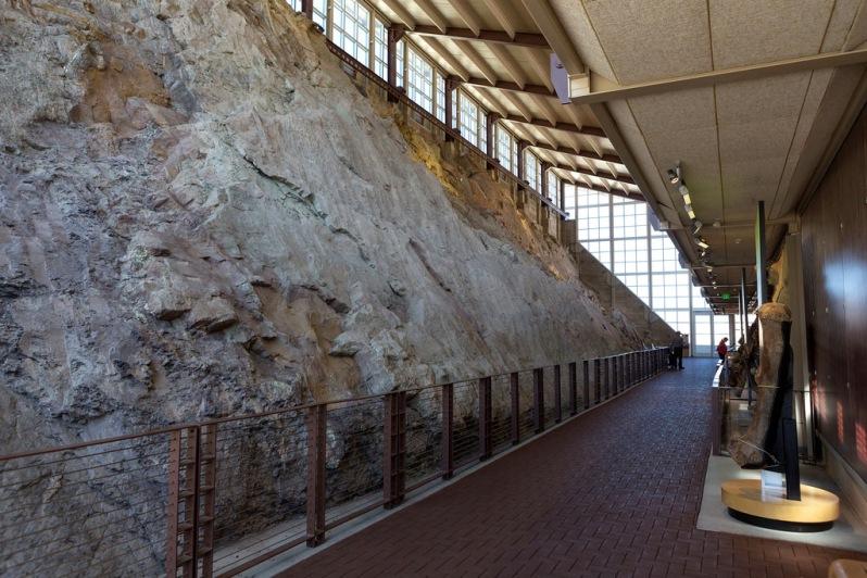 Quarry at Dinosaur National Monument