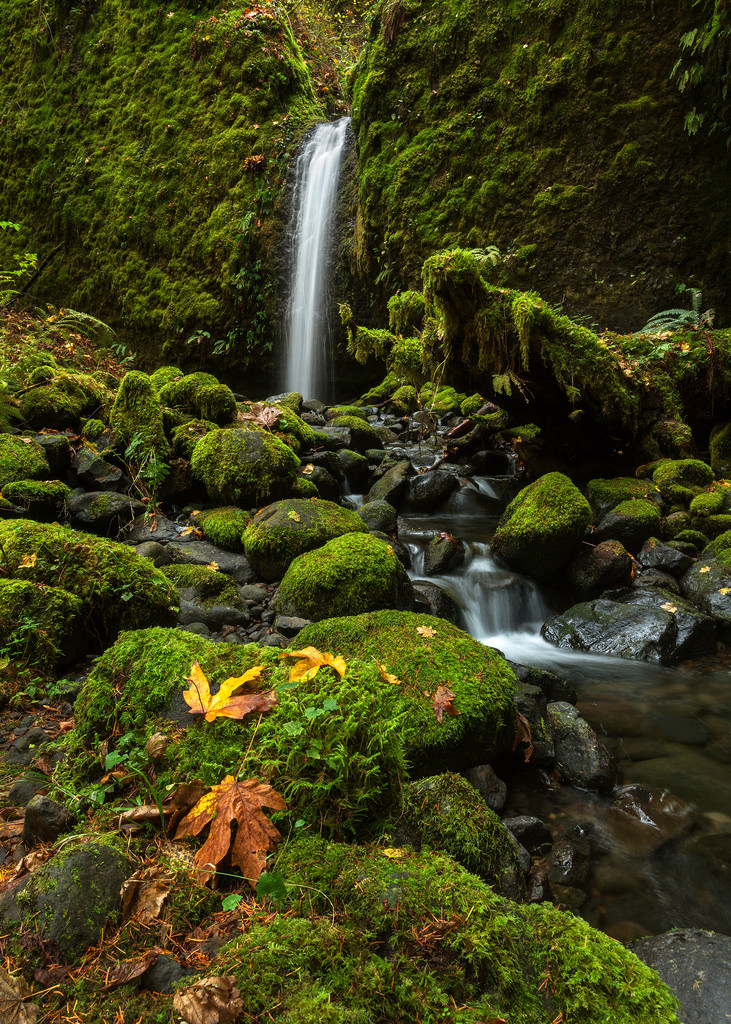 Mossy Grotto Falls Portrait