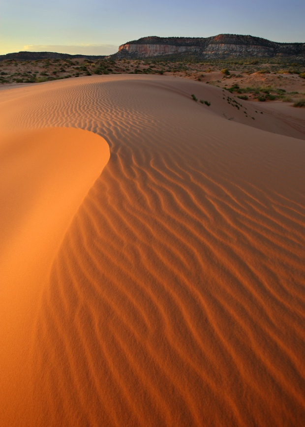 Coral Pink Sand Dunes Sunset