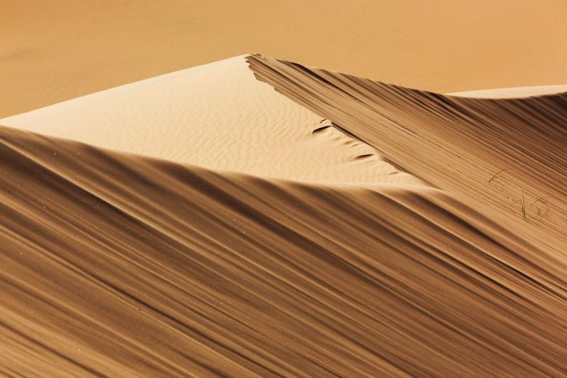 Kelso Dunes Pattern