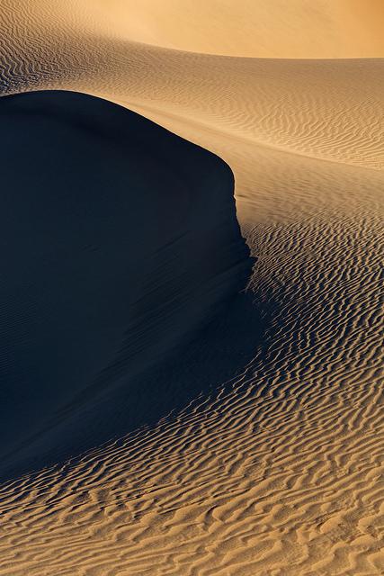 February DV Dune Portrait