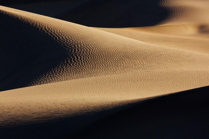 Mesquite Dune Curves