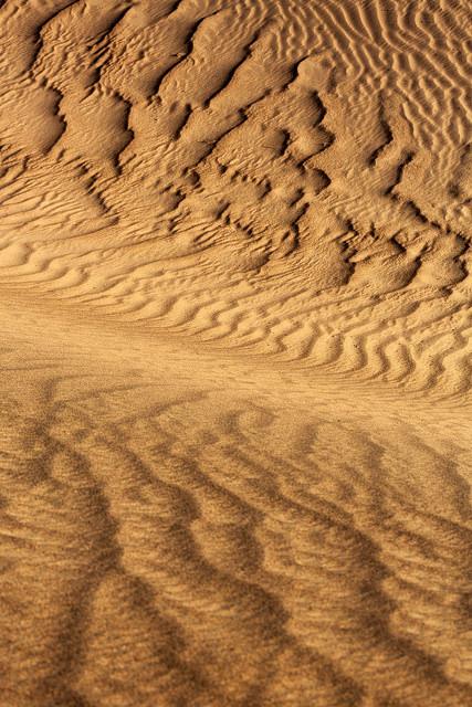 Mesquite Dune DV Pattern