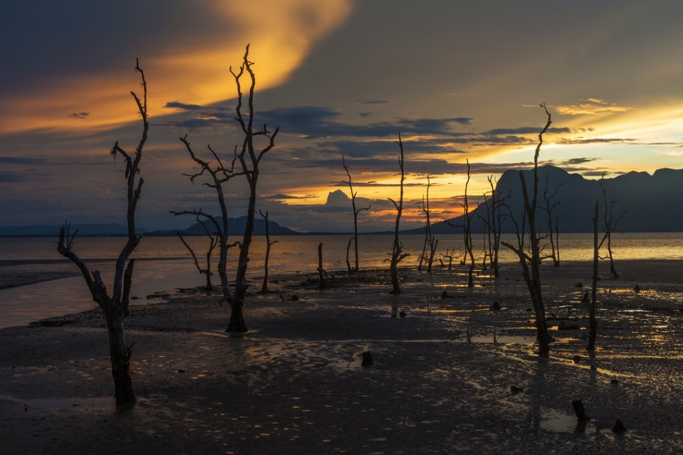Bako Sunset Landscape
