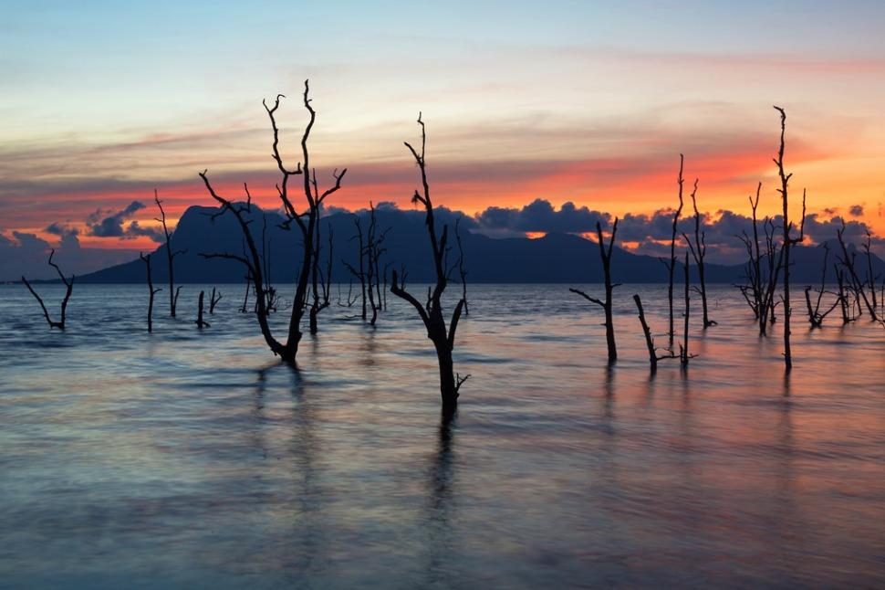 High Tide Sunset at Bako