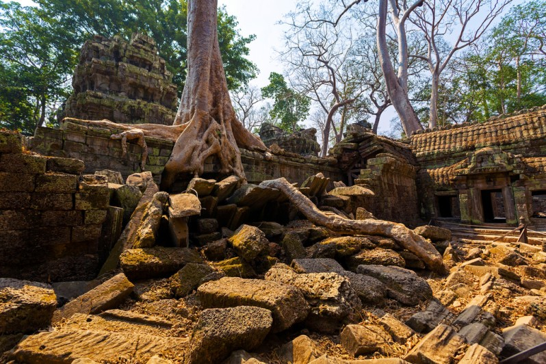 Roots and Rubble at Ta Prohm