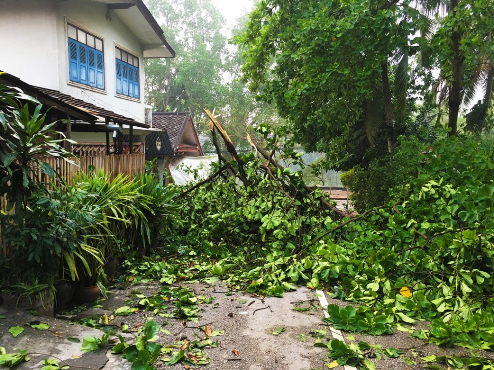 Storm Damage in Luang Prabang