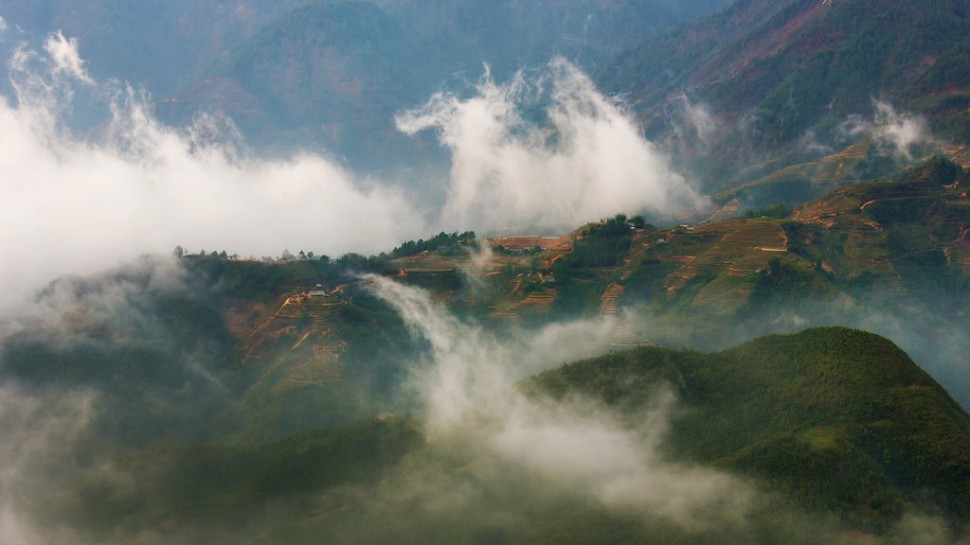 Early Morning Fog in Sapa