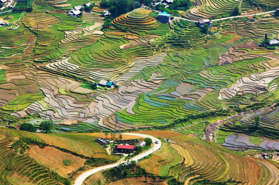 Rice Terrace Landscape Between Hau Thoa and Sapa