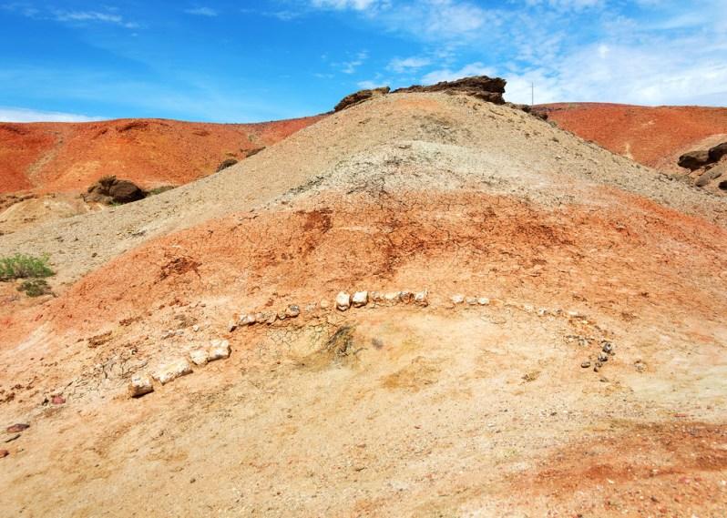 Dinosaur Skeleton Near Shambhala