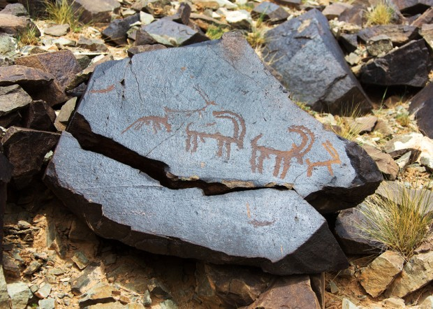 Ibex Petroglyphs at Khavtsgait