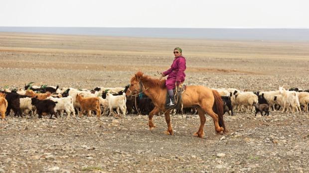 Mongolian Horsewoman
