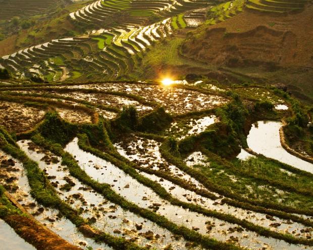Rice Terrace Sun Reflection