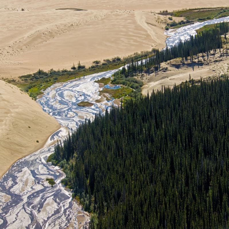 Kobuk Valley Dunes and River