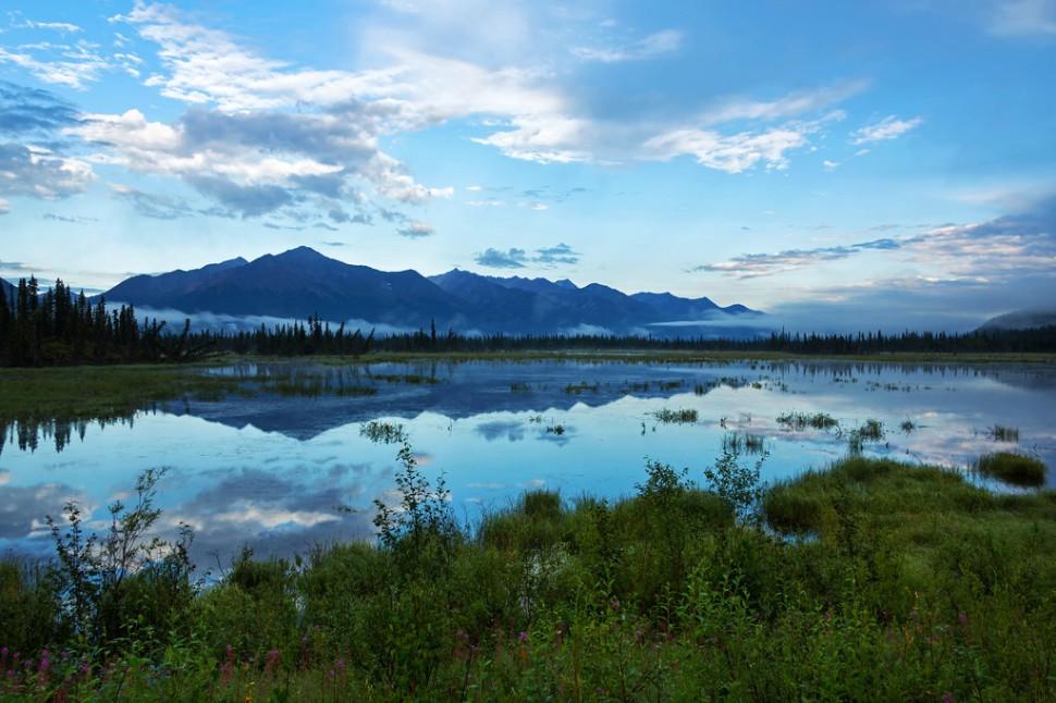 Morning Reflection North of Slana
