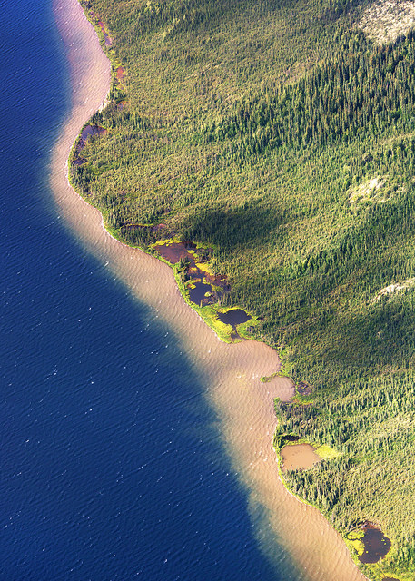 Muddy Shoreline Near Kobuk Valley