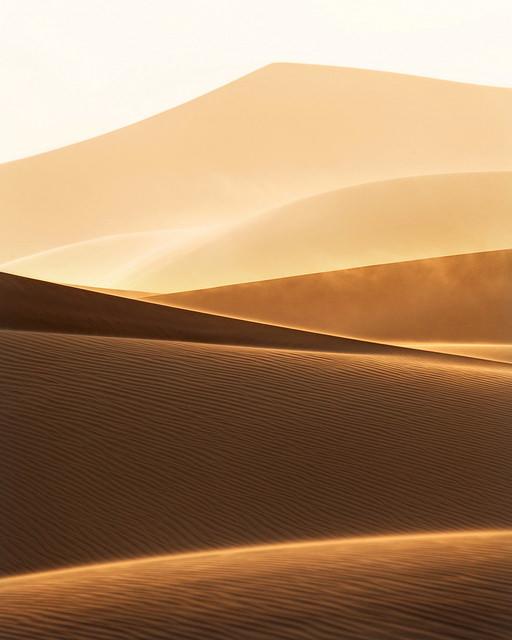 sandstorm-portrait