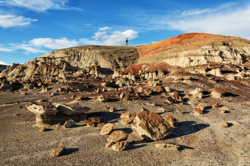 marie-on-a-hill-at-bisti